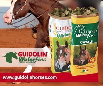 Guidolin Horse  – Alimenti naturali di gran qualità