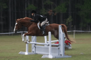 equitation_over_fences