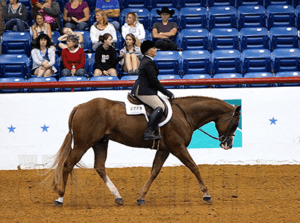 hunt_seat_equitation