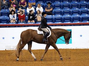 hunt_seat_equitation