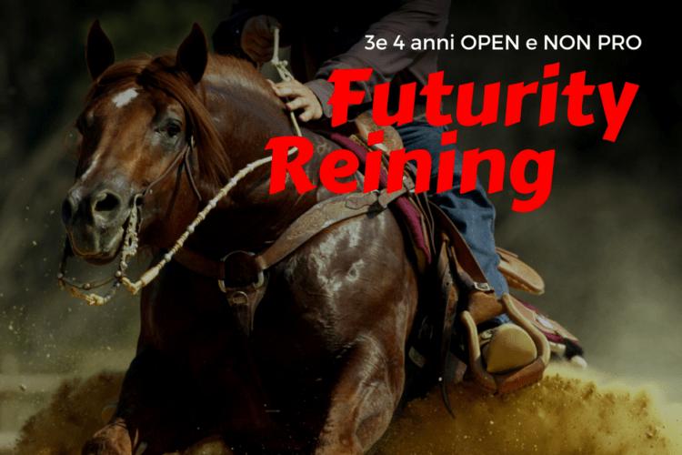 Classifiche del Futurity Reining (3 e 4 anni OPEN e NON PRO) | 11-19 novembre 2017 Cremona