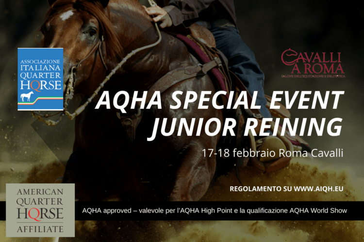 AQHA SPECIAL EVENT JUNIOR REINING