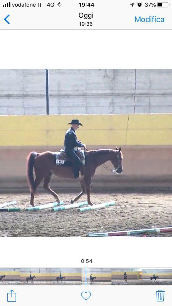 Luca Rossi settimo in trail horse nocive amateur
