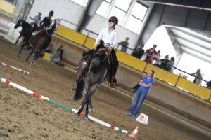 Vanessa Bellotto & Simply The Best Code, Novice Youth All Breed: Trail e Showmanship finalista Horsemanship 5 posto