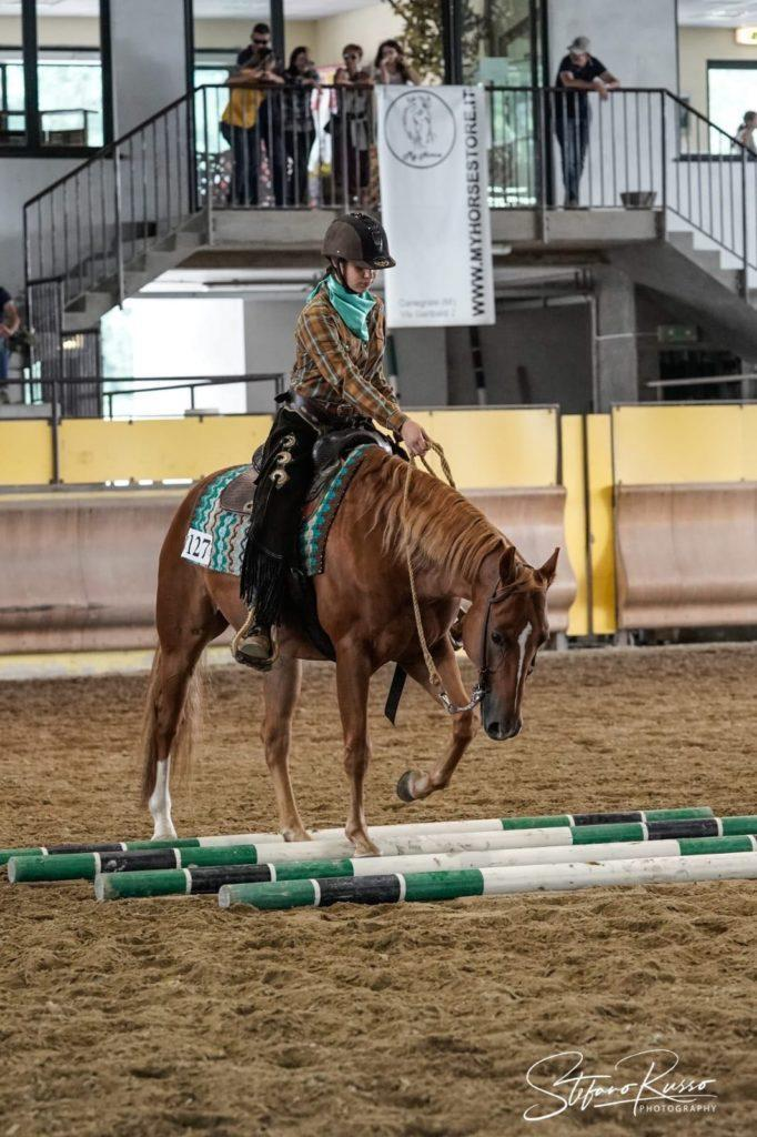Veronica Ursella e Am Maximus Prime 🥈Halter Geldings Novice Youth All Breed 🥈Halter Geldings Novice Youth Aiqh/Aqha 🥉Showmanship at Halter Novice Youth All Breed 🥈Showmanship at Halter Novice Youth Aiqh/Aqha 🏅Top Ten Western Horsemanship Novice Youth All Breed 🏅Top Five Western Horsemanship Novice Youth Aiqh/Aqha 🥉Hunter Under Saddle Novice Youth All Breed 🥈Hunter Under Saddle Novice Youth Aiqh/Aqha 🏅Top Five Hunt Seat Equitation Novice Youth All Breed e Aiqh/Aqha 🏅Top Ten Trail Horse Novice Youth All Breed 🏅Top Five Trail Horse Novice Youth Aiqh/Aqha 🏅Top Ten Ranch Riding Novice Youth All Breed e Aiqh/Aqha