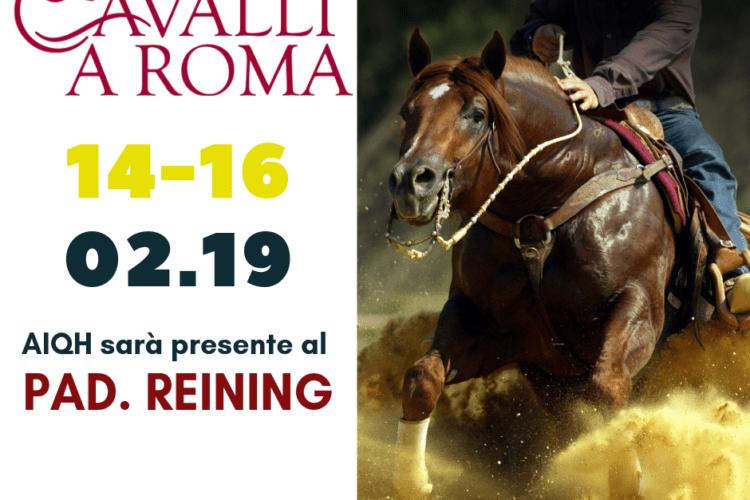 AIQH SPECIAL EVENT JUNIOR REINING  | Roma Cavalli – 14/16 Febbraio 2019