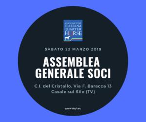 Assemblea Generale AIQH marzo 2019